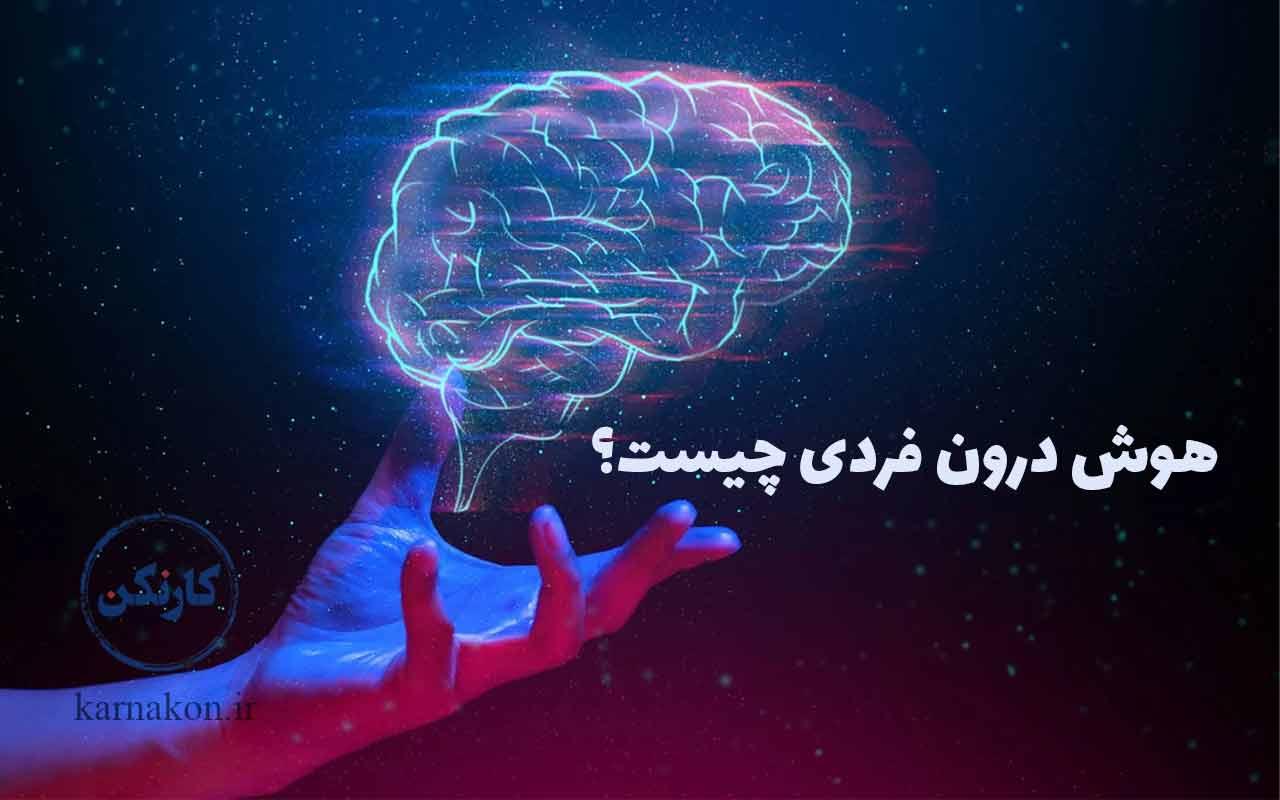 هوش درون فردی چیست؟ و راهکارهای رشد هوش درون فردی