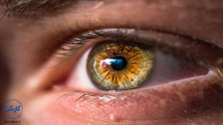 شخصیت شناسی چشم عسلی ها
