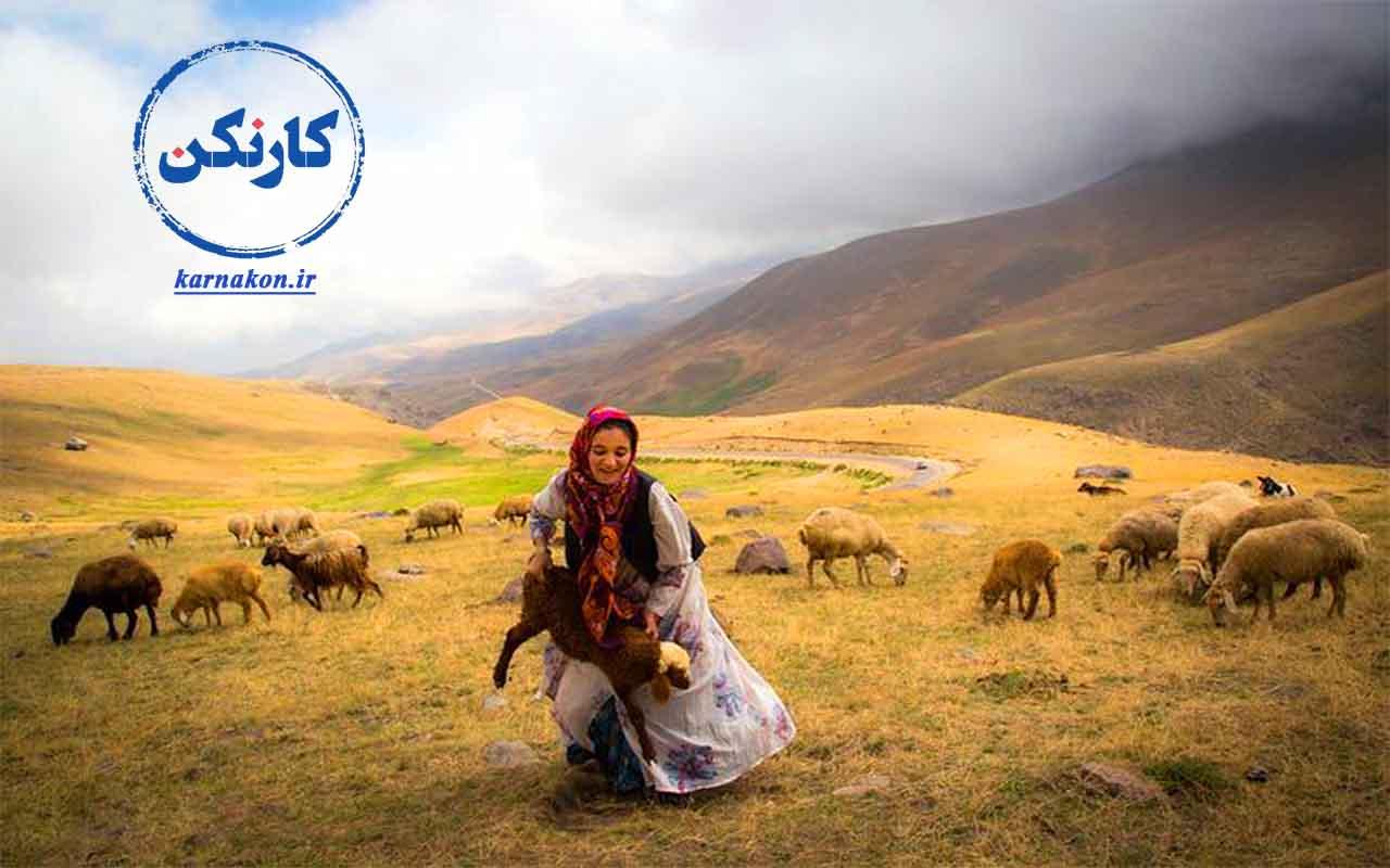 اشتغال زنان روستایی در امور مربوط به دامپروری