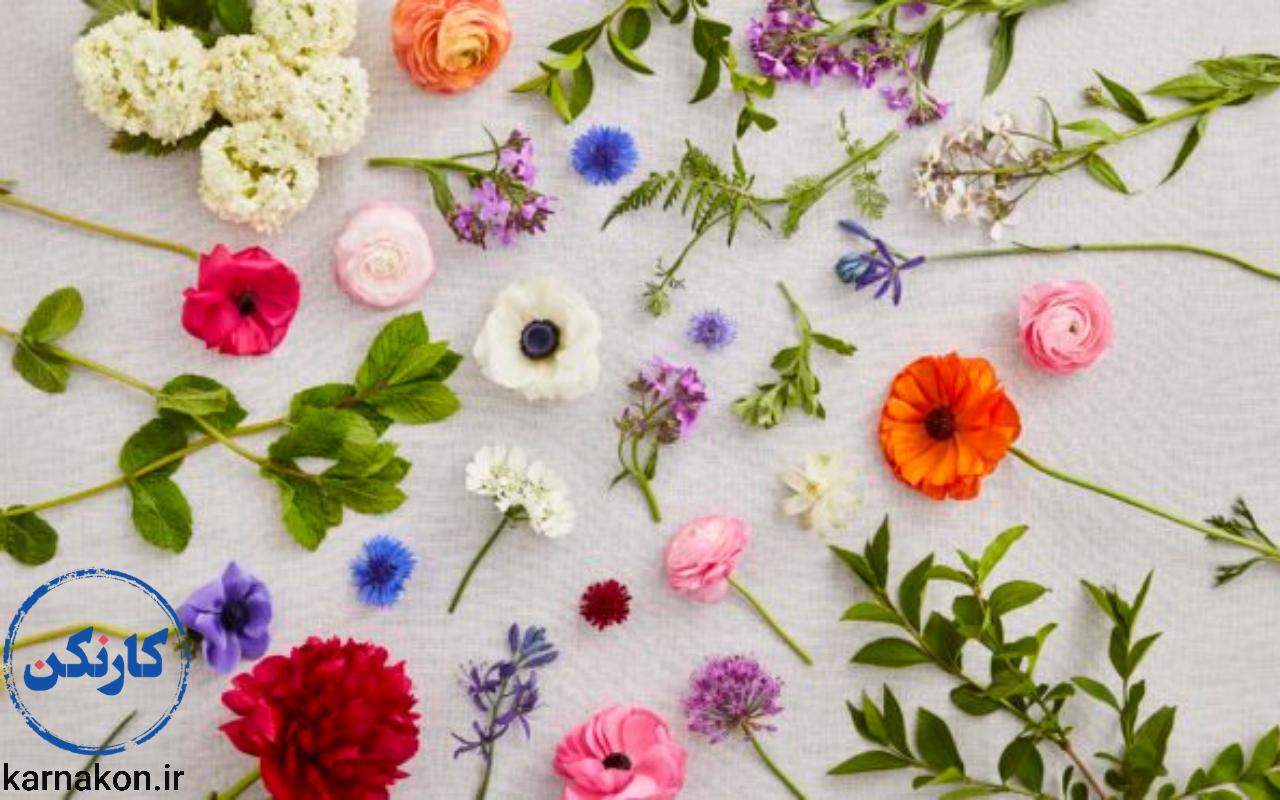 یکی از راههای درآمد در روستا پرورش و تولید گل است