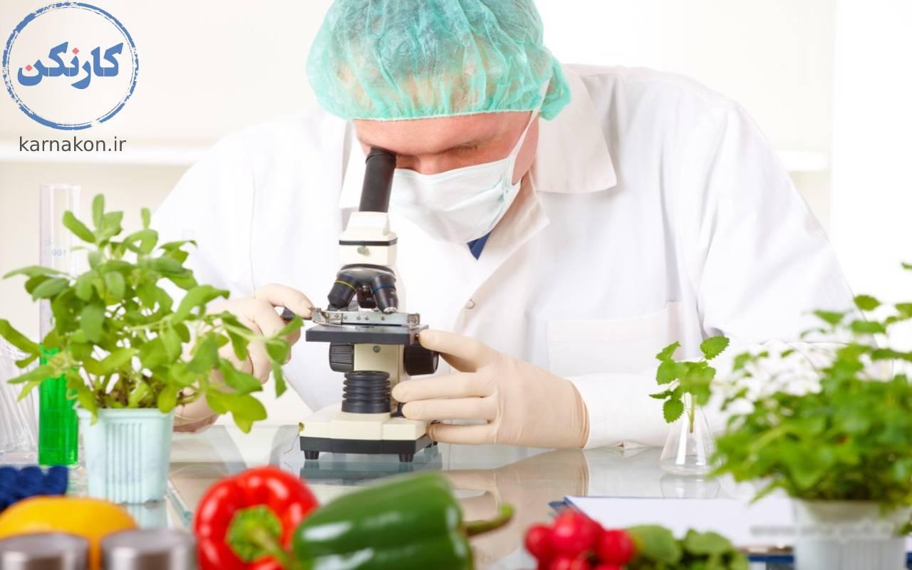 معرفی رشته های ریاضی - علوم و مهندسی صنایع غذایی