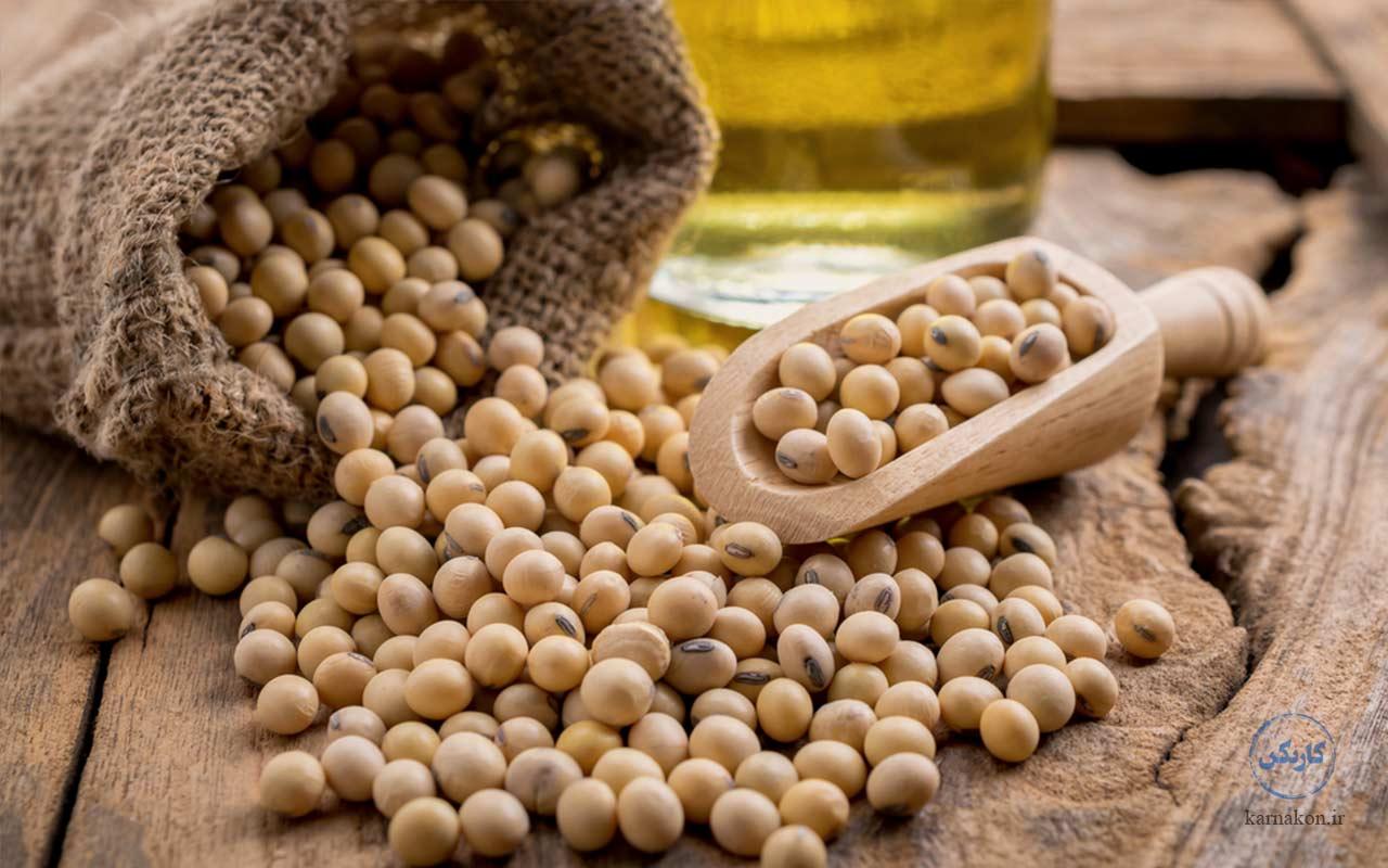تولید سویا جزء فهرست پرسودترین محصولات کشاورزی در ایران