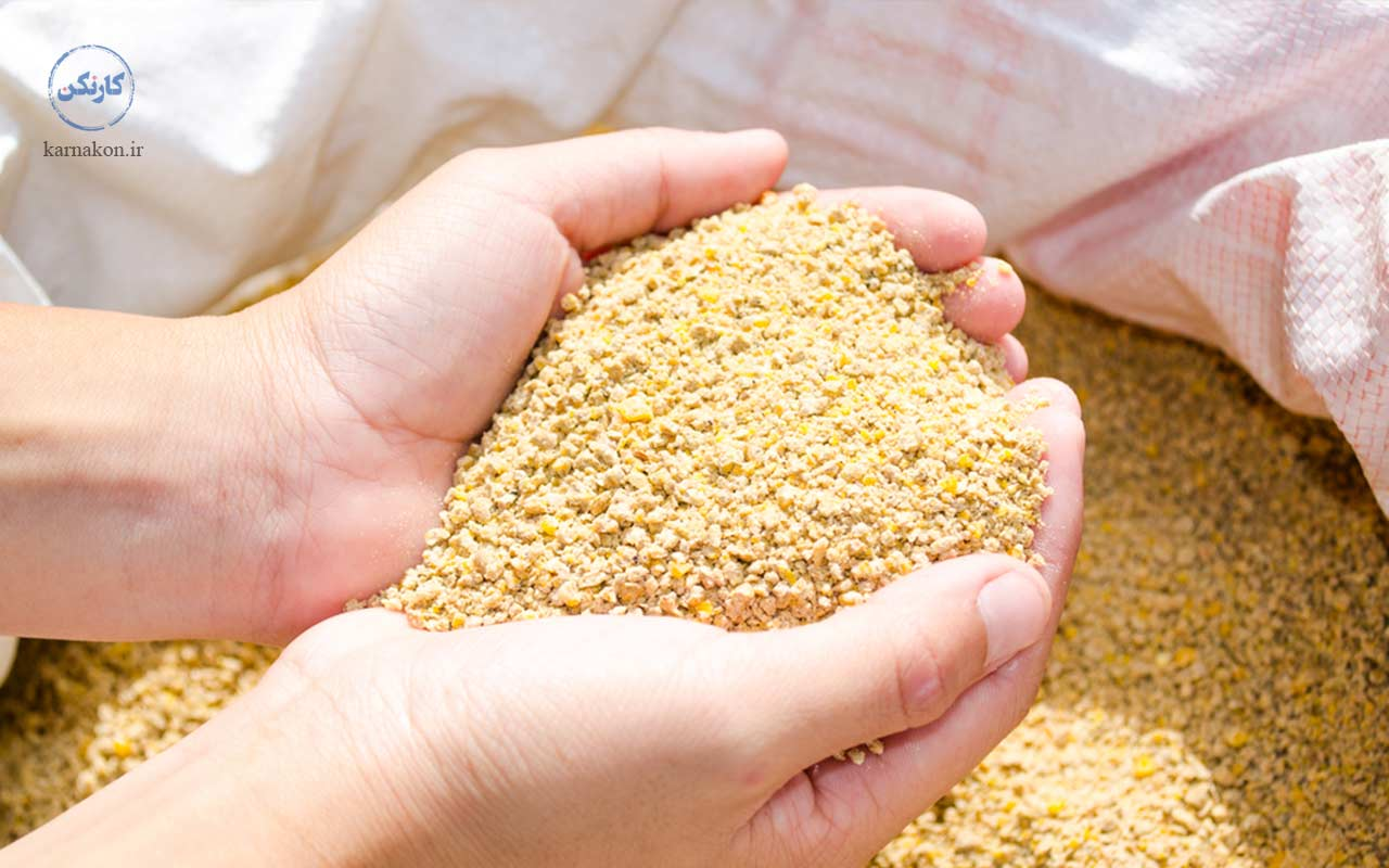 تولید خوراک دام و طیور یکی از ایده های پولساز کشاورزی