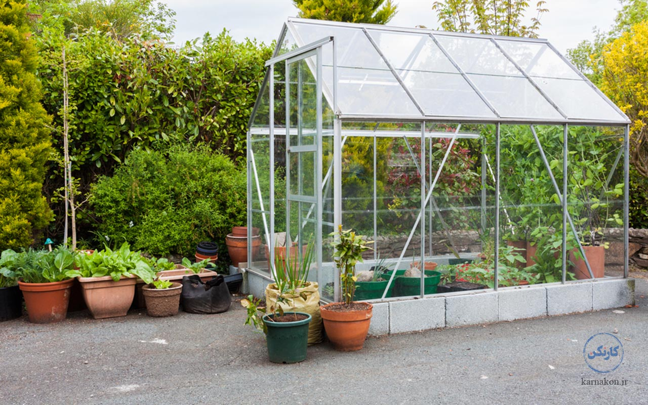 راهاندازی گلخانه در فهرست ایده های پولساز کشاورزی