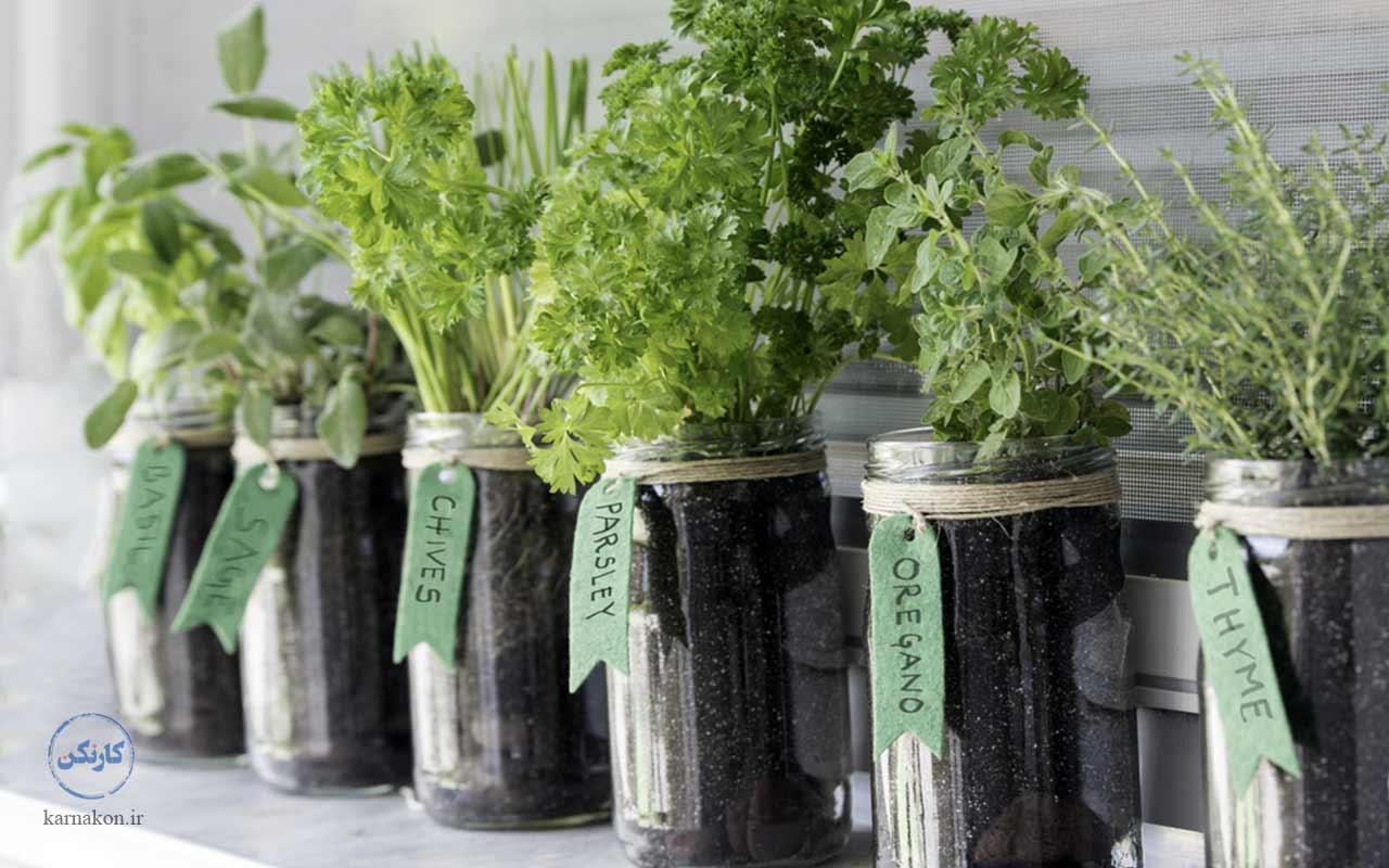 پرورش سبزیجات در لیست ایده های پولساز کشاورزی