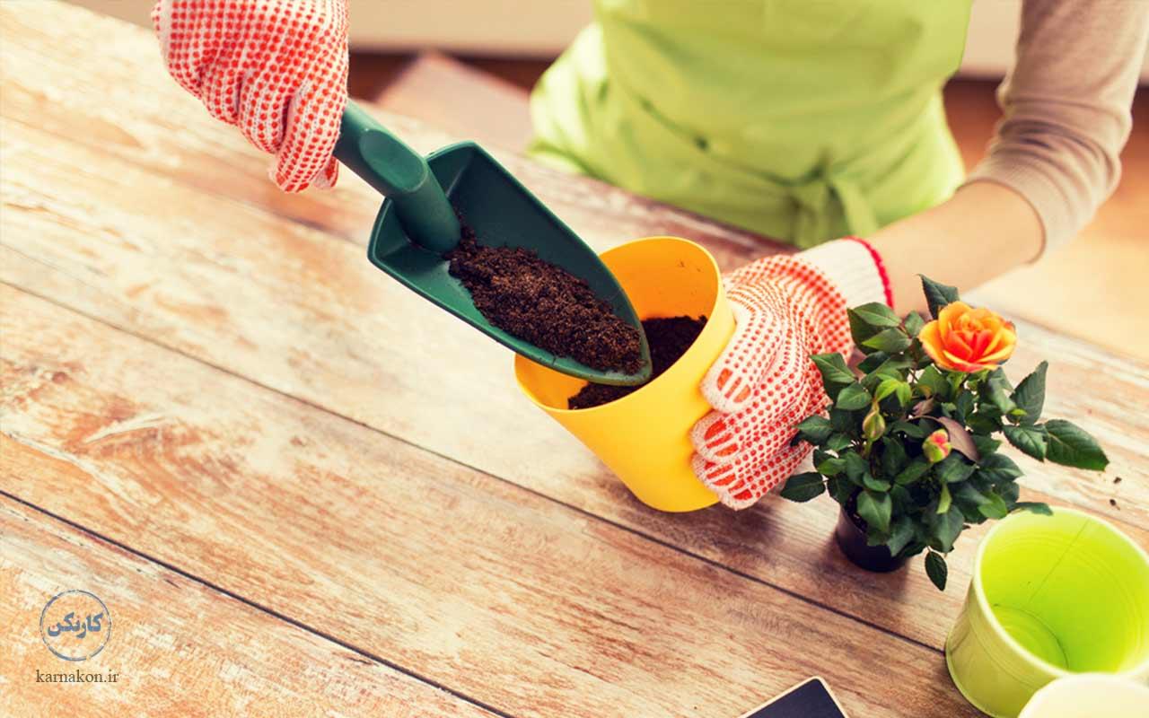 گلفروشی از ایدههای کارآفرینی در زمینه کشاورزی