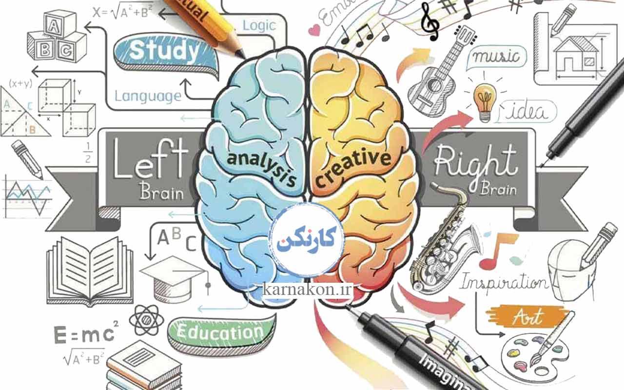 ارتباط هوش موسیقیایی گاردنر و مغز تست هوش موسیقی