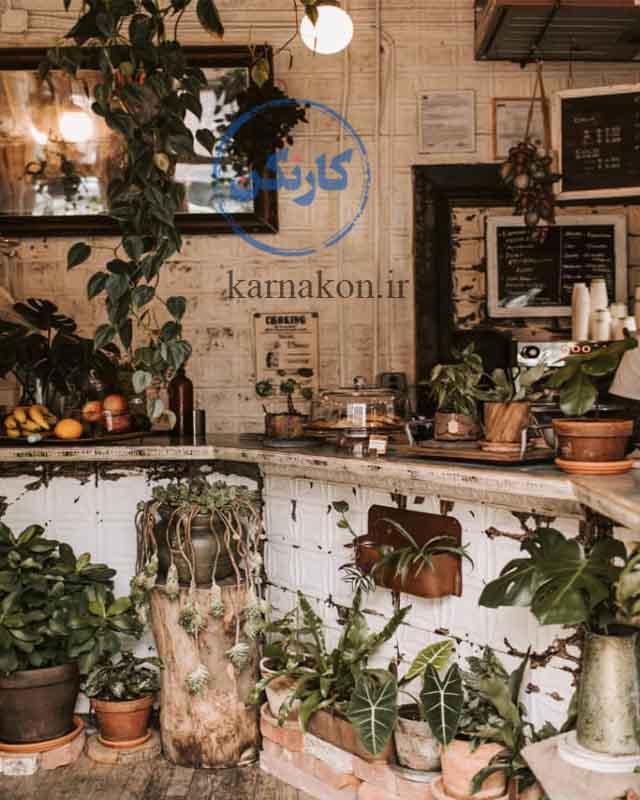 گیاهان جلوۀ چشمنوازی به مغازۀ شما میبخشند و یک ایده برای مغازه قهوه فروشی شما بهکار میرود.