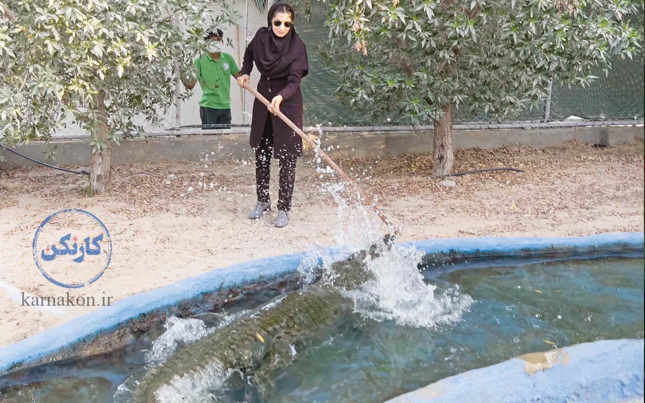 زن کارآفرین موفق ایرانی